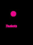 Telekom_Baskets_Bonn_Logo